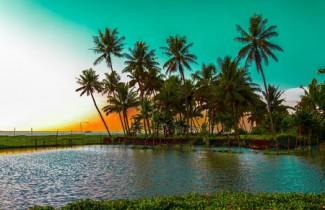 Отдых в Керала